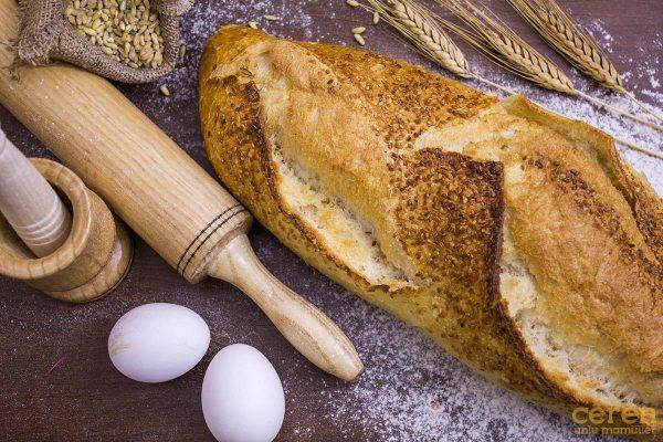 Ceren Ata Ekmeği